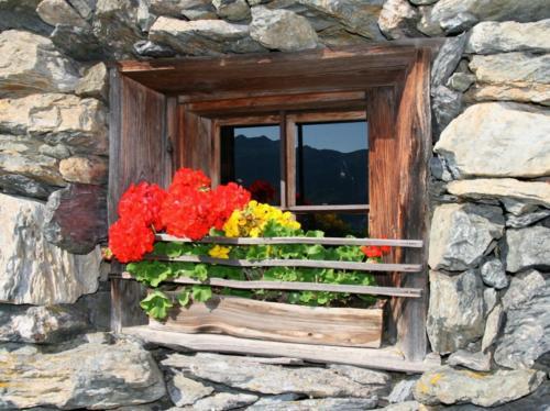 Bloemen langs de balkons